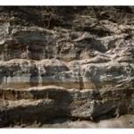 Осадочные горные породы: описание и свойства