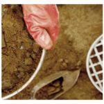 Структура глинистого грунта
